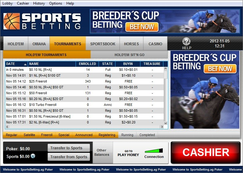 Popular online sports betting sites